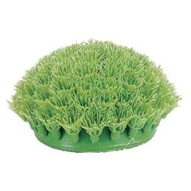 Marina Plantas Plasticas Rootscaper Anubias Anã 15 cm - TRPP205