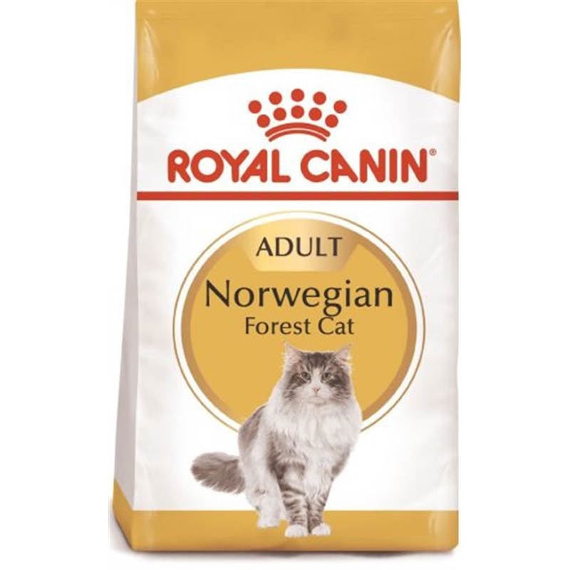 Royal Canin Norwegian Forest Cat - 10 kgs - RC652201100