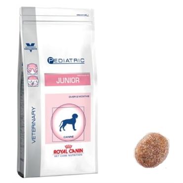 Royal Canin Pediatric Junior Canine