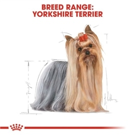 ROYAL CANIN YORKSHIRE ADULT - 0.500 KGS #1 - RC352128580
