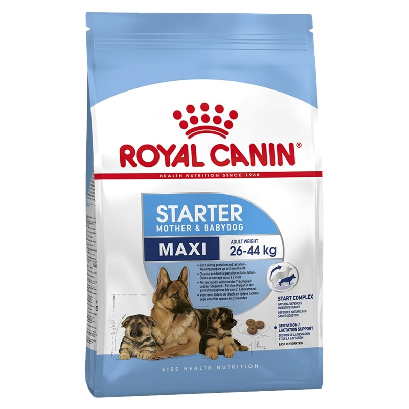 ROYAL CANIN MAXI STARTER MOTHER & BABYDOG - 15KG - RC332159930