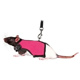 Trixie Peitoral com Trela Elastica para Porquinhos Da India e Ratos - 12-18CM - OREXTX61511