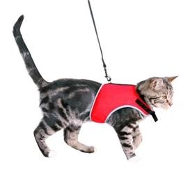Trixie Peitoral e Trela Xcat Nylon para Gatos 24-42 cm - 24-42CM - OREXTX41896
