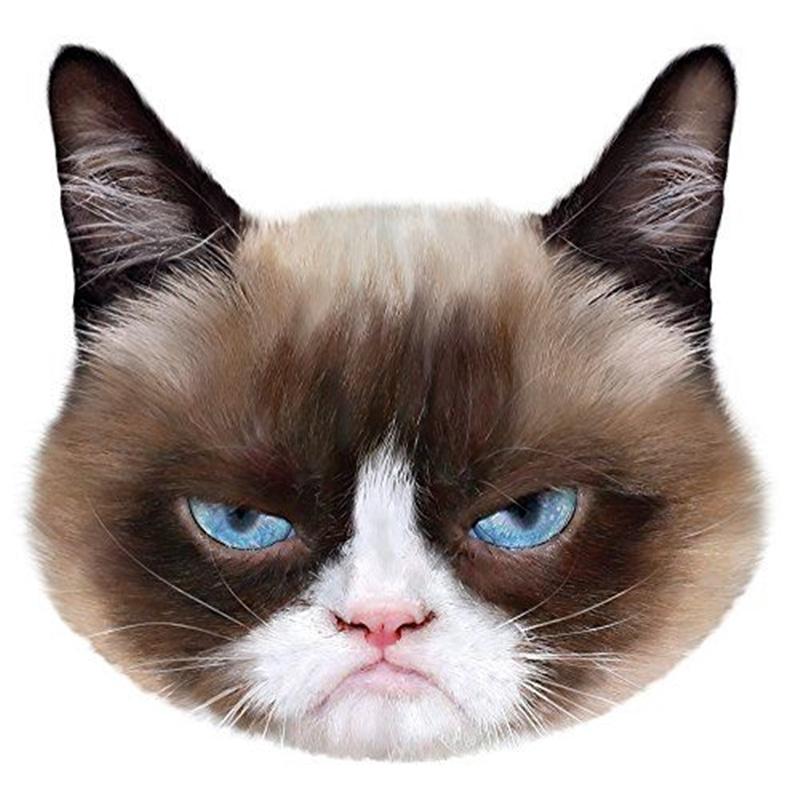 PetFace Pet Faces Grumpy Cat - GEPETFACE-02-5