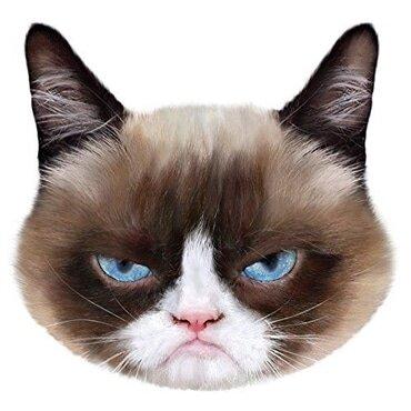 PetFace Pet Faces Grumpy Cat