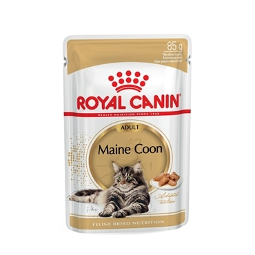 Royal Canin Maine Coon Loaf