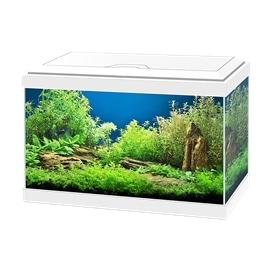 Ciano Aquário Kit Aqua 20 - AC540142