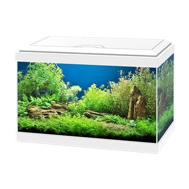 Ciano Aquário Kit Aqua 20
