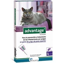 Advantage 80 - gatos mais de 4kg - HE7425546