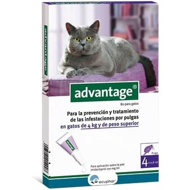 Advantage 80 - gatos mais de 4kg