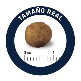 Advance Gastroenteric Low Fat - 12,00 Kgs - 921945
