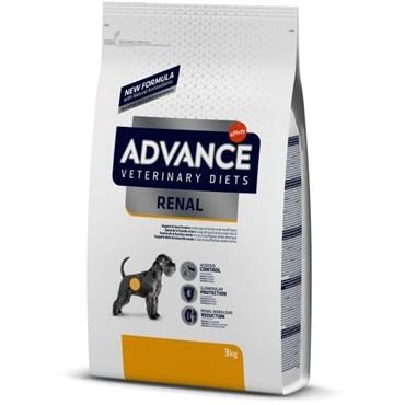 Advance Renal Failure Canine